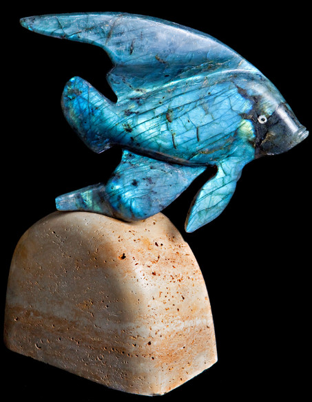 opalFish.jpg