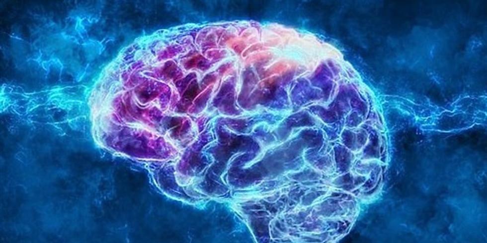 על הקשר בין חוסר איזון במוח לאוטיזם15.2.21 (1)