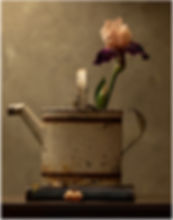 094A4103-1 IRIS and WATERING CAN nhcc.jp