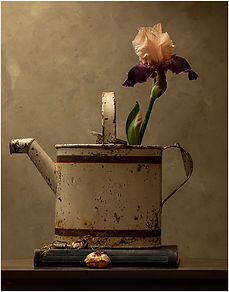 3 1 IRIS and WATERING CAN nhcc.jpg