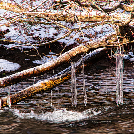 Natures Icicles