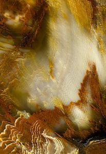 Fellner_13_The Multiplicity of Creation.