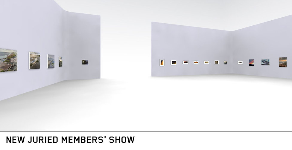 Show Cover 3.JPG