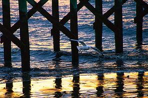 Kendzior_7_Morning Light.jpg