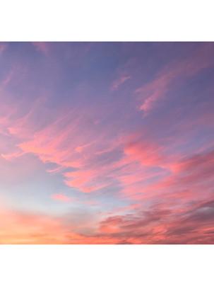 Whitagram-Image 16.JPG