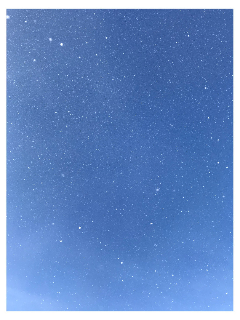 Whitagram-Image 18.JPG