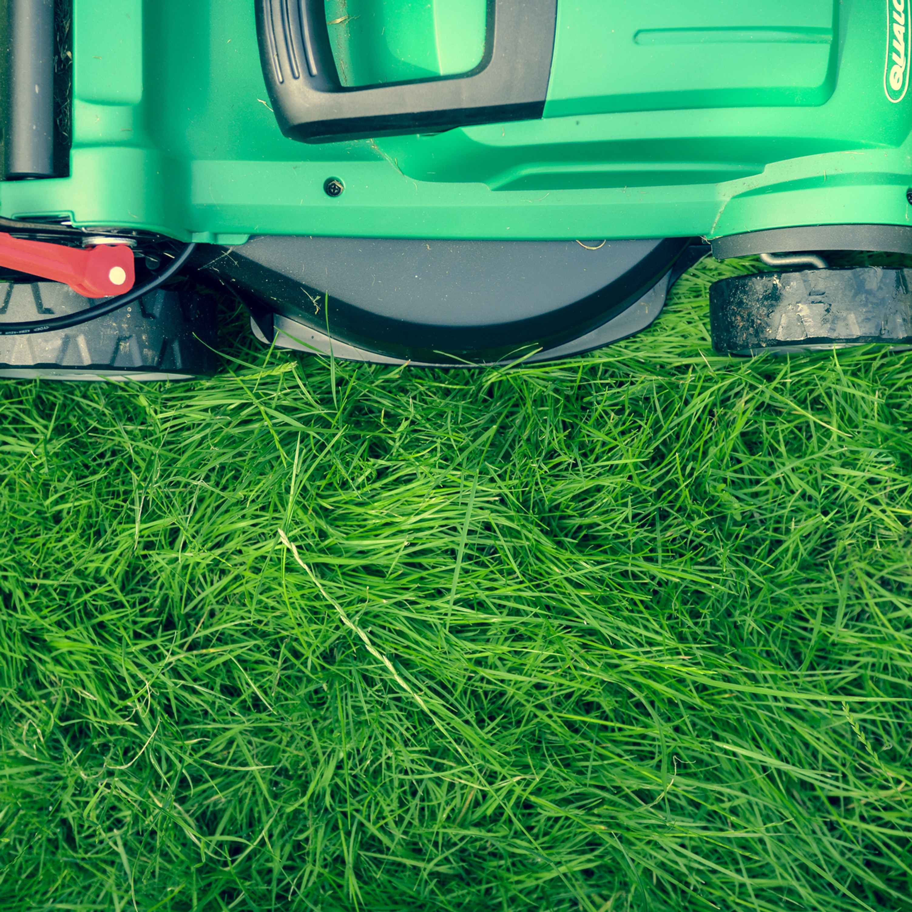 Landscaping and Lawn Care Service