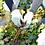 Thumbnail: 彩菱茶 3袋セット