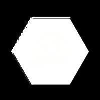 PECUARIOSLOGO1-04.png