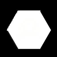 PECUARIOSLOGO6-04.png