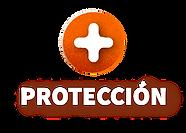 PROTECCION-PORQ-02.png
