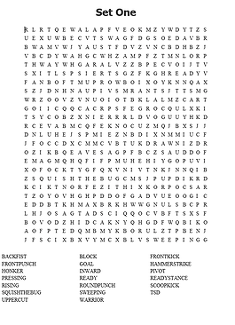 pic of set 1 wordfind.png