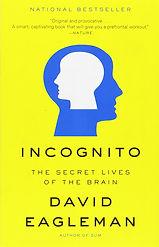Incognito-by-DavidEagleman.jpg