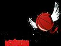logo_tsv.png