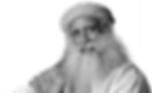 Sadhguru, yogi, mystic, visionary humanitatiran and founder of Isha Foundation