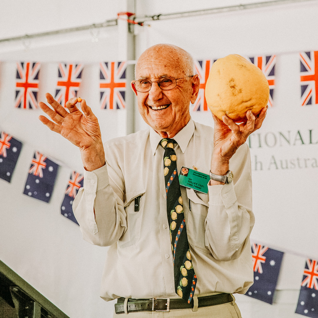 Ian Tolley presents on citrus.jpg