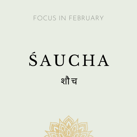 Focus of the Month - February