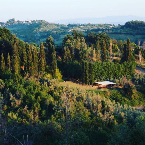 In Sabina hill lands