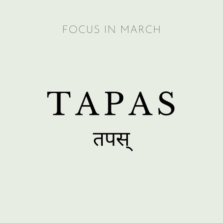 Focus of the Month - March