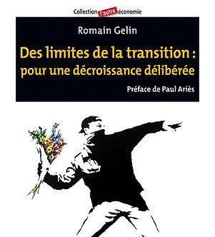 Romain Gelin - Des limites de la transition : pour une décroissance délibérée