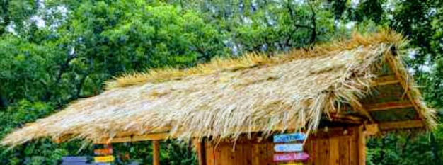 WATER PROOF MEXICAN THATCHED ROOF