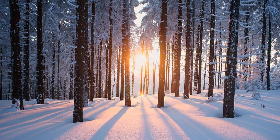 Shamanic Winter Solstice