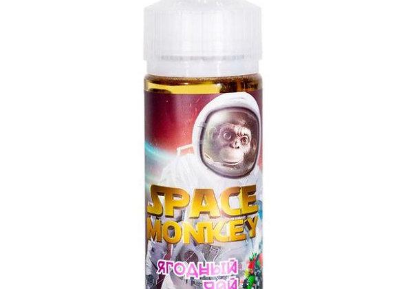 SPACE MONKEY 120мл