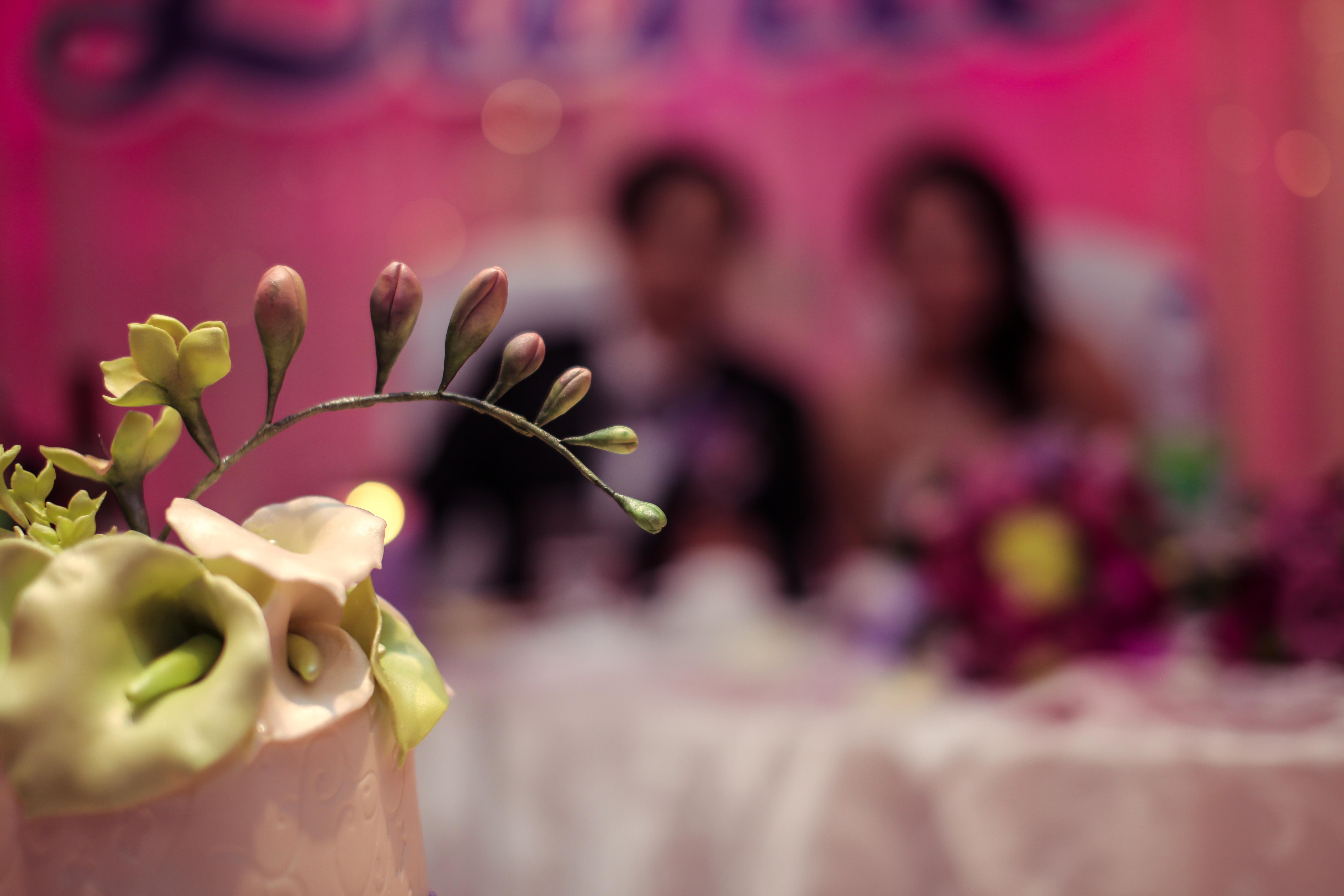 Montreal wedding  photographer (51)