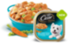 Cesar Canine Cuisine Wet Dog Food Catzenpup