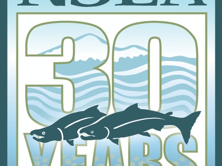 Celebrating 30 years of saving salmon and the environment