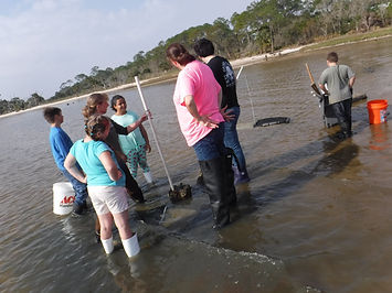 Helping with Oysters at Esturary.jpg