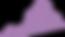 purple va.png
