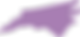 purple nc.png