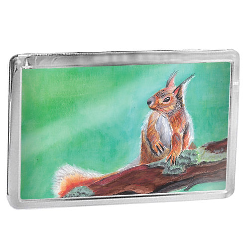 Red Squirrel In Acrylics - Fridge Magnet