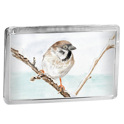 Sparrow - Fridge Magnet