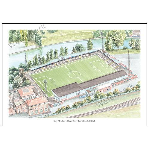 Shrewsbury Town FC - Gay Meadow, Limited Edition Print A4 / A3