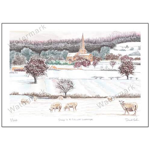 Sheep In Cotswold Landscape, Print A4