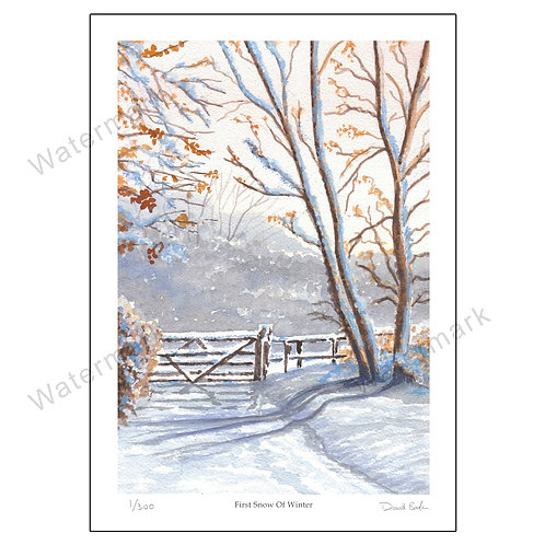 First Snow Of Winter, Limited Edition Print A4 or A3