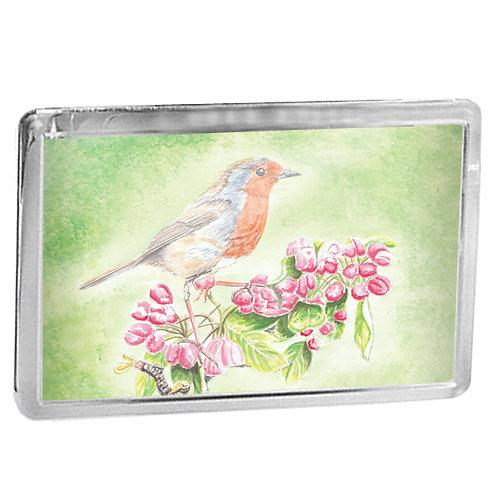 Robin On Apple Blossom - Fridge Magnet