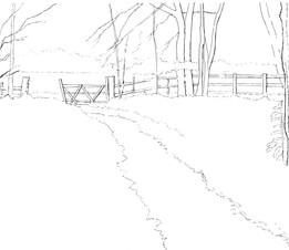 Bluebell Wood BW Template.jpg