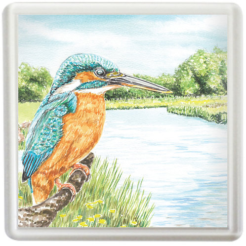 Kingfisher By The River - Coaster