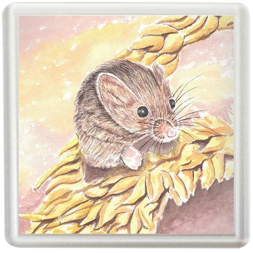 Harvest Mouse - Coaster