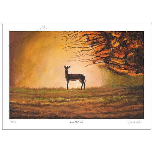 Deer On Point - Limited Edition,  Print A4 or A3