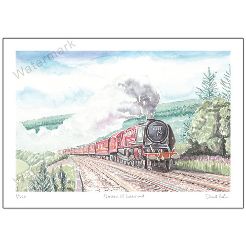 Duchess of Sutherland, Limited Edition,  Print A4 or A3