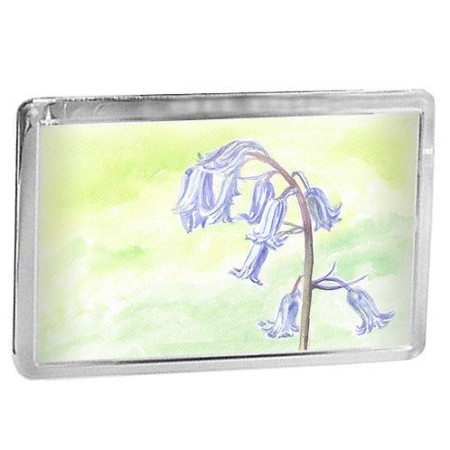 Bluebells - Fridge Magnet