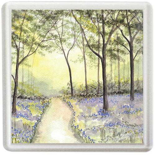 Bluebell Wood Study 3 - Coaster