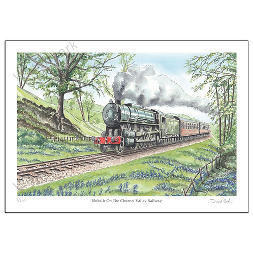 Bluebells On The Churnet Valley Railway Print A4 or A