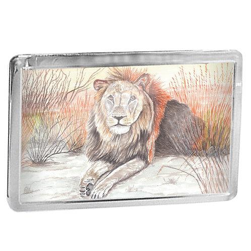 Relaxing Male Lion - Fridge Magnet
