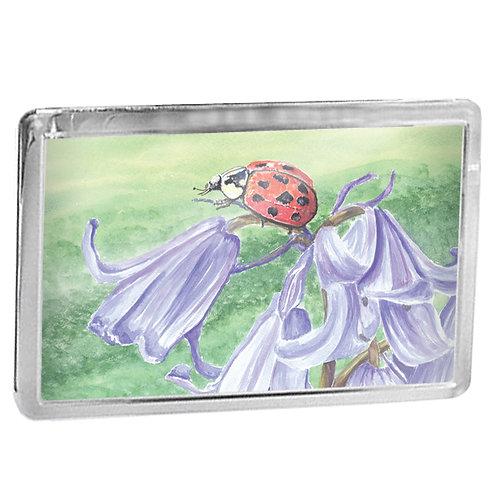 Ladybird On A Bluebell - Fridge Magnet