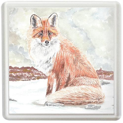 Fox In Winter - Coaster
